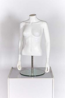 Female Torso with Arms