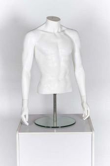 Male Torso with Arms